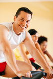 Bicycle Spinning in gym. Group of three people - presumably friends - spinning in the gym, , exercising for their legs and cardio training Stock Image