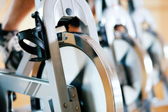 Free Bicycle Spinning In Gym Stock Photo - 15236790