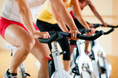 Free Bicycle Spinning In Gym Stock Photo - 15749550