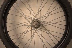 Bicycle spoke wheel Stock Image