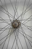 Bicycle spoke wheel Stock Image