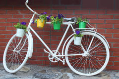 Bicycle stand for flowers Stock Images