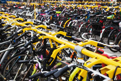 Bicycle stand Stock Images