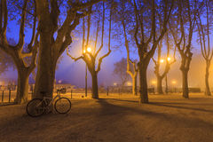 Bicycle standing in evening park. France. Stock Photography