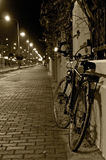 The bicycle stands at the fence at night stock photos