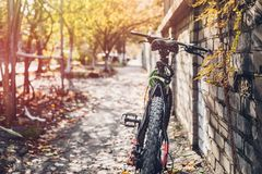 Bicycle Stands Near A Brick Wall, Rear View. Holiday Weekend Activity. Mountain Bike stands near a brick wall, a rear view. Holiday Weekend Activity Royalty Free Stock Photo