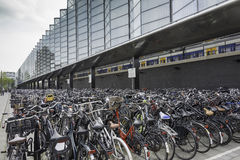Bicycle storage at rotterdam station Royalty Free Stock Photography
