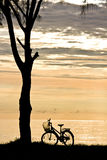 Bicycle on the sunrise beach Stock Photo
