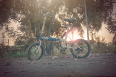 Bicycle at sunset. Stock Photography