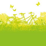 Bicycle and tandem in spring Royalty Free Stock Photo