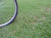 Bicycle tire on grass Stock Images
