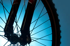 Bicycle tire and spoke wheel. Sport bicycle tire and spoke wheel stock photos