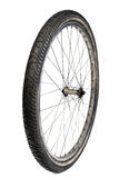 Bicycle tire on white Stock Image