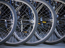 Bicycle tires royalty free stock image