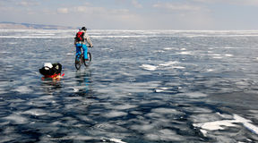 Bicycle tourist on the frozen lake. Bicycle tourist riding on the surface of frozen lake with sledge stock image