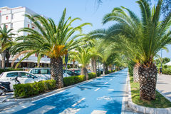 Bicycle track on the adriatic sea coast. Seashore of city Alba Adriatica in Italy, Palm trees on the sides, summer sunny day. Stock Photos