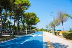 Bicycle track on the adriatic sea coast. Seashore of city Alba Adriatica in Italy, Pine trees on the side, summer sunny day. Royalty Free Stock Photos