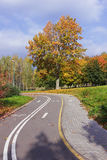 Bicycle track in the autumn park. Royalty Free Stock Images