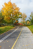 Bicycle track in the autumn park. Royalty Free Stock Photography