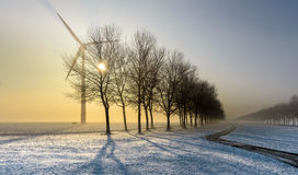 Bicycle track in a foggy and wintry landscape Stock Photo
