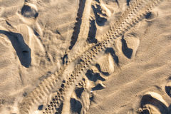 Bicycle tracks on a sand in summer Stock Photo