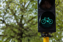 Bicycle traffic light in Europe Stock Photo