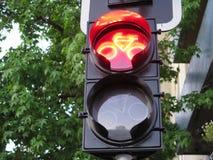 Bicycle traffic light Royalty Free Stock Photo