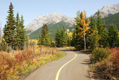 Bicycle trail royalty free stock photo