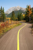 Bicycle trail Royalty Free Stock Photos