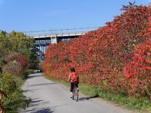 Bicycle trail in fall. Don Valley, Toronto stock photography