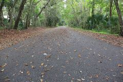 Bicycle Trail in Fall with Leaves. A low shot of a bike path when the leaves are falling. This picture would be great for designers to add text on all of the stock photography