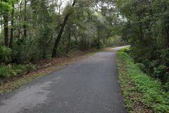 Bike Path Just after Rain and Tropical stock photo