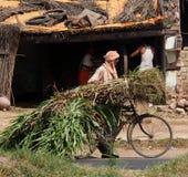 Bicycle transport India Royalty Free Stock Image
