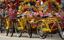 Bicycle transportation stock photos