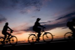Bicycle travel. Silhouette the companies of friends on a bicycle going on lake coast on a sunset Royalty Free Stock Photo