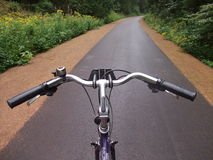Bicycle traveling on a forest road Stock Photos