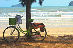 Bicycle with tree at the beach Royalty Free Stock Photo