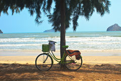 Bicycle with tree at the beach Stock Photography