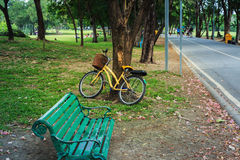 Bicycle with the tree with the bench Royalty Free Stock Images