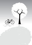 Bicycle and Tree, Light and Shadow, Greyscale Royalty Free Stock Photo