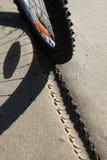 Bicycle tyre shoe tracks on sand. Bike on the beach, sea Royalty Free Stock Photos