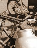 Bicycle used by milkman in the bin of aluminum. Old bicycle of the last century used to transport the milk by milkman in the bin of aluminum and the bike saddle Royalty Free Stock Photos