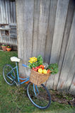 Bicycle and Vegetables. Old Bicycle with basket full of fresh vegetables Stock Image