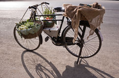 Bicycle & Vegetables Royalty Free Stock Image
