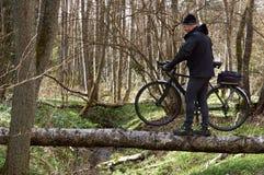 Bicycle, veloplasty, caminhada, floresta, mola, homem, para cruzar o rio, rio, log, pântano Foto de Stock