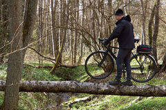 Bicycle, veloplasty, walk, forest, spring, male, to cross the ri Royalty Free Stock Images