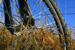 Bicycle walk Stock Image