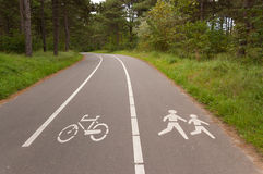 Bicycle and walking lane in forest Royalty Free Stock Photos