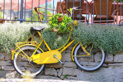 Bicycle on a wall with flowers in a basket Stock Images