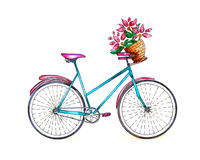 Bicycle Watercolor Stock Image